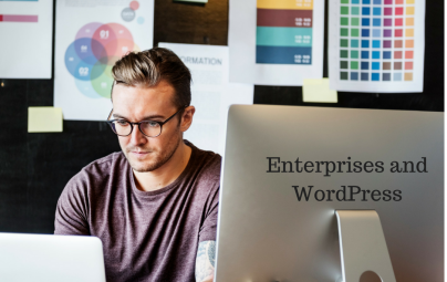 15 Obstacles That Enterprises Report in WordPress and Development Partners